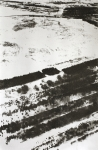 Tanja Engelberts, Cutting through the Boreal forest (II), 2018, Silkscreen with Tar sand, 60 x 90 cm, 5 + 2 AP.