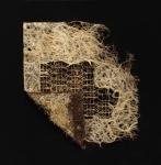 Diana Scherer, Rootbound #1.2, 2018, Soil/seed/photography, fine art print, framed | 59 x 60 cm | ed. 5 + 2 AP