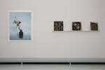 Photography Extended III – Museum Het Valkhof, Nijmegen