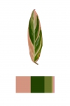 Anne Geene, Colour Analysis #5, 2014, from the series: Colour Analysis, 29,7 x 21 cm, edition 8 + 2 AP