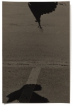 Hans Bol, Untitled #8, negative 2017, printed 2019. Silver gelatin, toning, gold leaf, image size 21,9 x 33,1 cm, framed 40 x 50 cm. Edition 7 + 1 AP