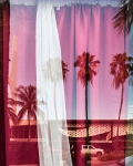 South Beach Reflection, 2017