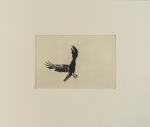 Hans Bol, Untitled #8T, negative 2006, printed 2019. Toyobo Chine-collé, image size 13 x 19,5 cm, paper size 31 x 36,5 cm, framed 34 x 39,5 cm. Edition 7 + 1 AP