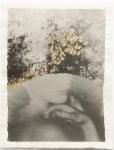 Margaret Lansink, Vulnerable, 2019 | collage printed on Kizuki handmade Washi paper, mended with 23Kt goldleaf | 22 x 28.5 cm  ed. 3 + 2 AP || SOLD OUT