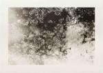 Margaret Lansink, Memory, 2019 | collotype print by Benrido Atelier | 41 x 56,5 cm | ed. 2 + 1 AP