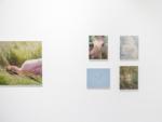 Matthieu Litt, Installation view Oasis,