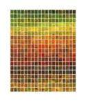 Anne Geene, Colour Analysis, Samples from Quinta da Penalva Garden, 2021 | C-Print on archival matte, inkjet, framed in oakwood frame with museum glass | 100 x 120 cm | Ed. 8 + 1 AP